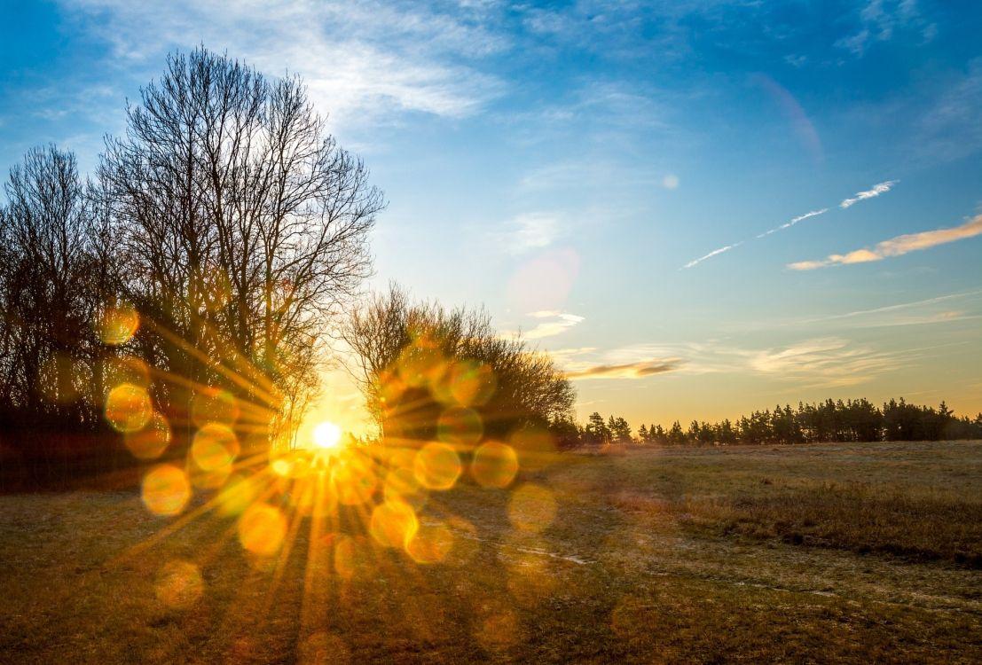 судя всему, солнечный день фото картинки играет постаревшего