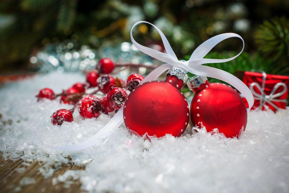 Обои клюква, ягоды, подарок, Санта-Клаус, рождественский орнамент в разрешении 6048x4032