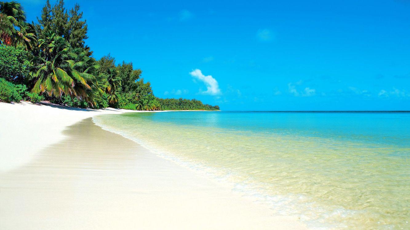 Обои песок, пляж, океан, закат, небо, горизонт картинки на рабочий ... | 750x1333